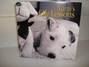 Yumi's Life Lessons