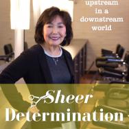 Sheer Determination book by Kay Hirai