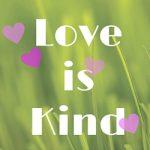 Love isin (3)