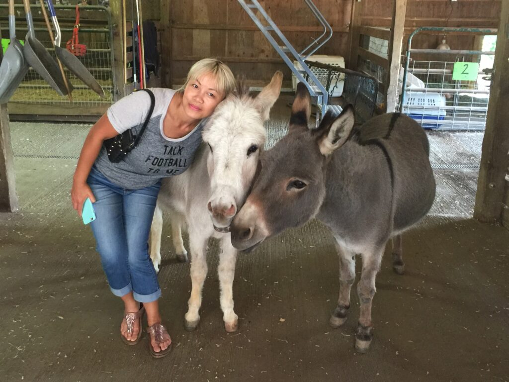Linda with donkeys at Pasados Safe Haven